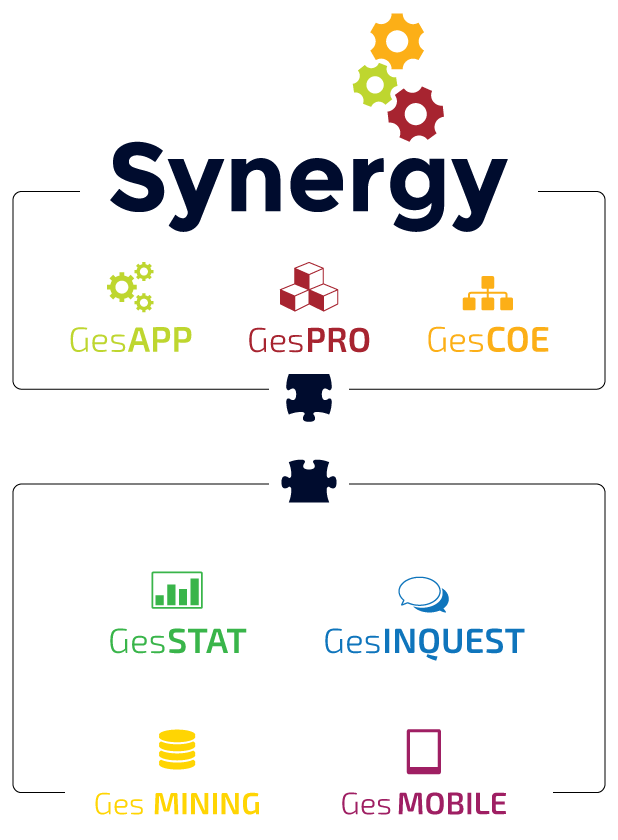 Nucleo Synergy BPM